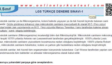 8. Sınıf Türkçe Dersi LGS Deneme Sınavı-1