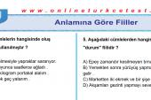 Anlamına Göre Fiiller İle İlgili PDF Test Soruları