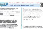 Büyük Ünlü Uyumu (Kalınlık-İncelik Uyumu) İle İlgili PDF Test İndir