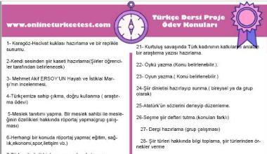 Türkçe Dersi Proje Ödevi Konuları