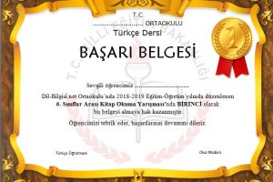 Türkçe Dersi Başarı Belgesi Örneği