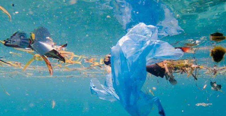 Deniz Kirliliği İle İlgili Gazete ve Dergi Yazıları Getiriniz