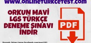 Orkun Mavi-LGS Türkçe Deneme Sınavı